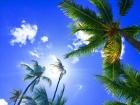 hawaii-2700190_1920